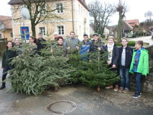 Christbaumaktion-2015-2